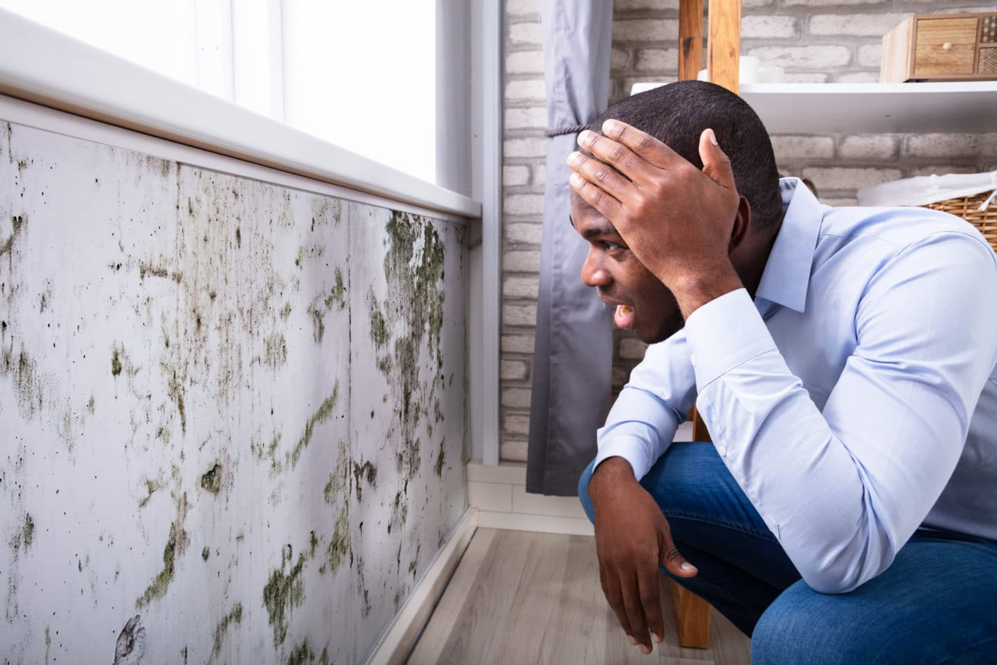 Side View Of A Shocked Young Man Looking At Mold and Mildew On Wall