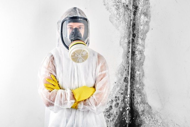 Where Should I Look For Mold?