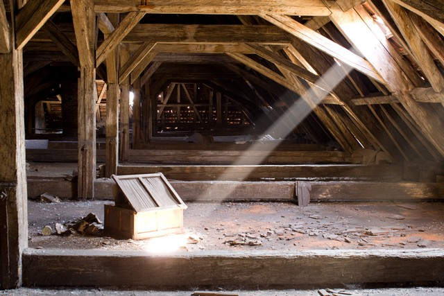 Should I Check My Attic For Mold?: Did you know that mold could be lurking in your attic? In fact, this is a common problem. This article provides you with the top 4 reasons why mold could be growing in your attic. A leaky roof is one cause of mold growth, can you guess the other three? Attic mold prevention is possible, be sure to check out our tips to keep the air in your attic healthy!